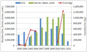 Figure 3.11. Exporter-reported direct exports of Cycas revoluta live plants and derivatives (excluding trade reported by weight) from the Region, all sources, 2003-2012.