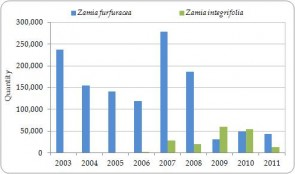 Figure 3.14. Exporter-reported direct exports of live Zamia furfuracea and Z. integrifolia from the Region, all sources, 2003-2011 (no trade was reported in 2012).