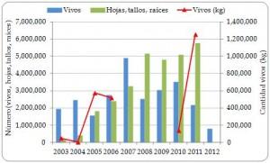 Figura 3.11. Exportaciones directas de plantas vivas y derivados de Cycas revoluta registrados por los exportadores desde la región, todas las fuentes, 2003-2012.