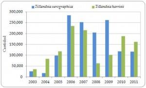 Figura 3.15. Exportaciones directas desde Guatemala de Tillandsia xerographica y T. harrisi vivas, reproducidas artificialmente, registradas por el exportador, 2003-2011 (todavía no se ha recibido el informe anual CITES de Guatemala de 2012).
