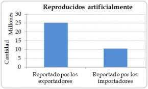 Figure 4.6. Artificially propagated (source 'A') direct exports of live Cycas revoluta from the Region reported by exporters (the Region) and by importers, 2003-2012.